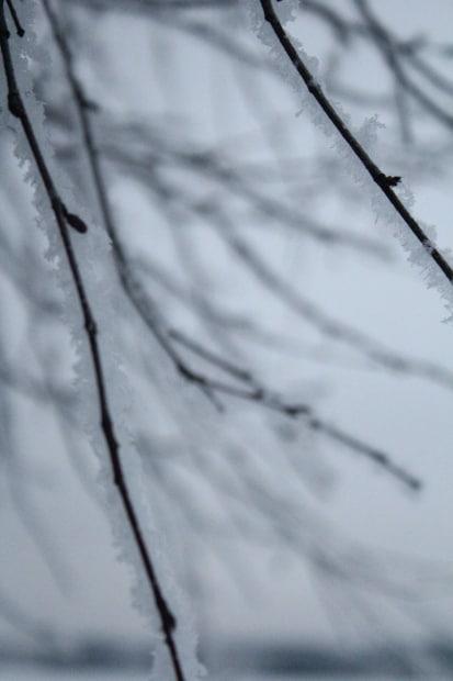 Lunta täällä.