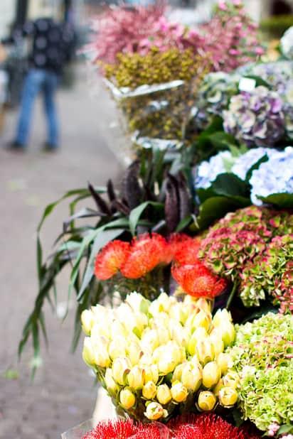 ja kukkia. Sitä se Amsterdam on.