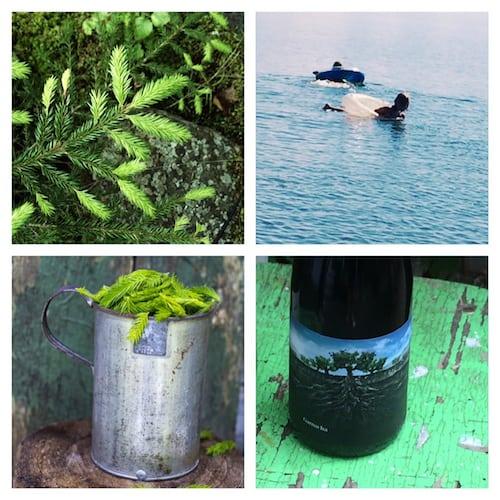 Metsän ja meren tunnelmaa, marjan makua.