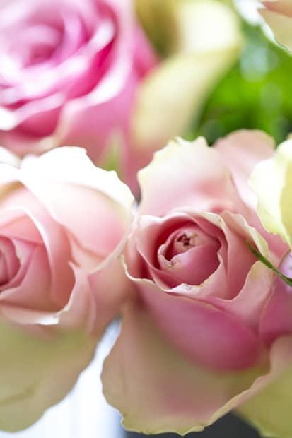 kukkia_