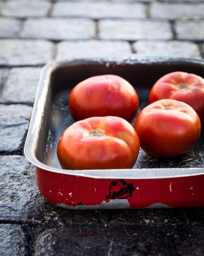 insalata caprese, lämmin tomaatti-mozzarellasalaatti,