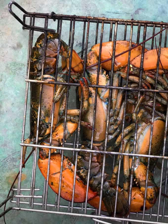 grillttu hummeri, grillaus, grillatut äyriäiset, penedes, finaca la caseta, maatalomajoitus penedeksessä
