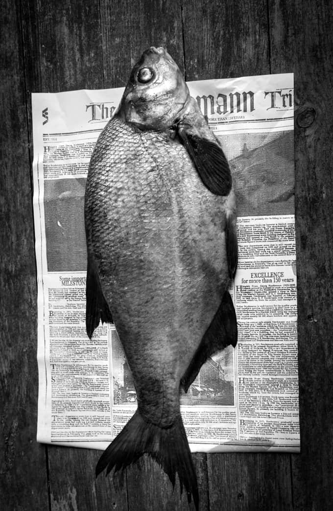 hipsterilahna, grillattu lahna, lahnareseptejä, kokonaisena grillattu kala, hyvä roseeviini, roseeviini kalalle