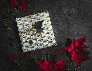 joululahja, joulutähti, gigantin verkkokauppa