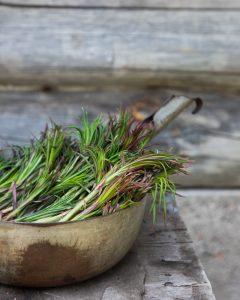 pikkelöidyt horsmat, mitä tehdä horsmista, villiyrteistä ruokaa, villiyrtit, horsmaa ruoaksi
