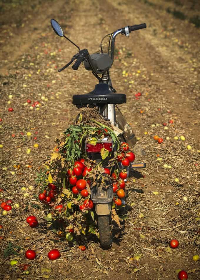 mutti, tomaattireseptejä, maailman paras tomaattikeitto, tomaattikeitto mozzarellalla, tomaattikeitto