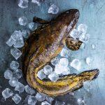 madekeitto, madereseptejä, kalareseptejä, made, mateen käsittely, mitä mateesta voi syödä