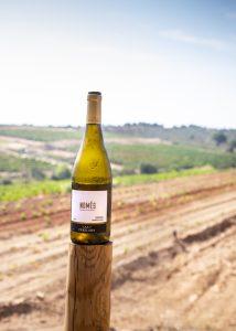 Pereladan viinitalo, Pereladan musiikkifestivaalit, pereladan viinit