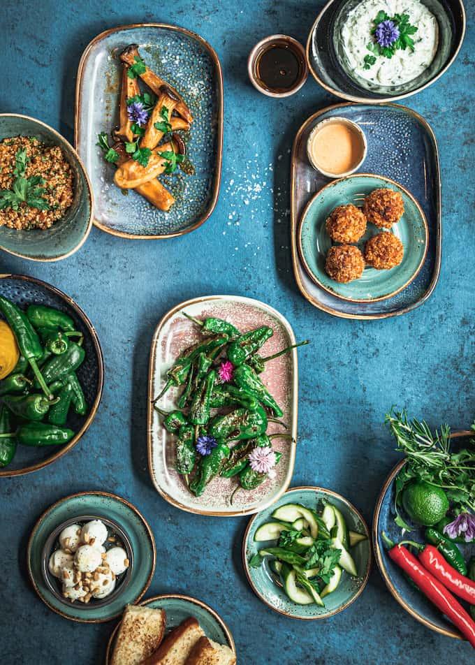 ravintola ilves, artistimenu, tavastia-klubin artistimenu, younghearted menu